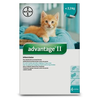Bayer Advantage II Kitten Flea Solution 4x0.23ml