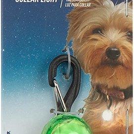Pet Lit LED COLLAR LIGHT - JEWEL GREEN LED