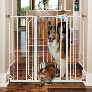 """Carlson Pet Products Walk Through Gate 36"""" High Fits Openings 29""""-36.5"""""""