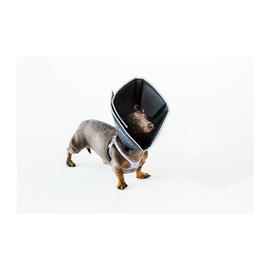The Comfy Cone THE COMFY CONE® BLACK SMALL