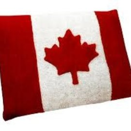Aviva Aviva Designs Dog Bed 21x30 Canada Flag
