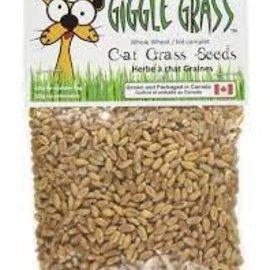 Giggle Grass Giggle Grass Cat Grass Seeds - 125g