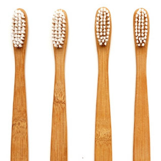 Salvatore Bamboo Toothbrush for Dogs & Cats Eco-Friendly & Biodegradable