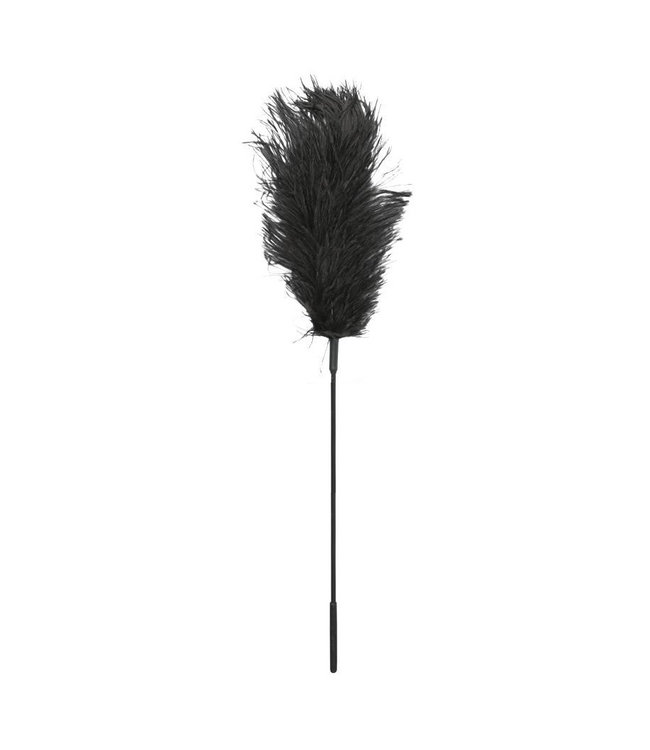 Ostrich Feather on a Stick