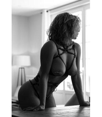 Vanessa Harness