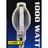 1000W 7500K MH Blue Enhanced Lamp