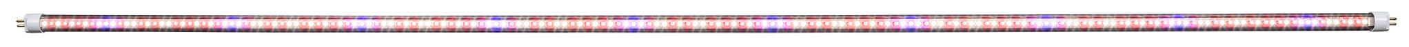 iSunlight 41w T5 4ft Bloom