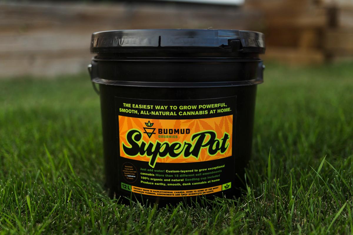 Bud Mud Super Pot