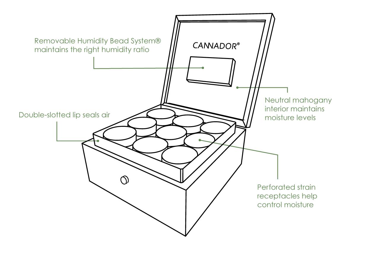 9-Strain Storage Box  - Walnut