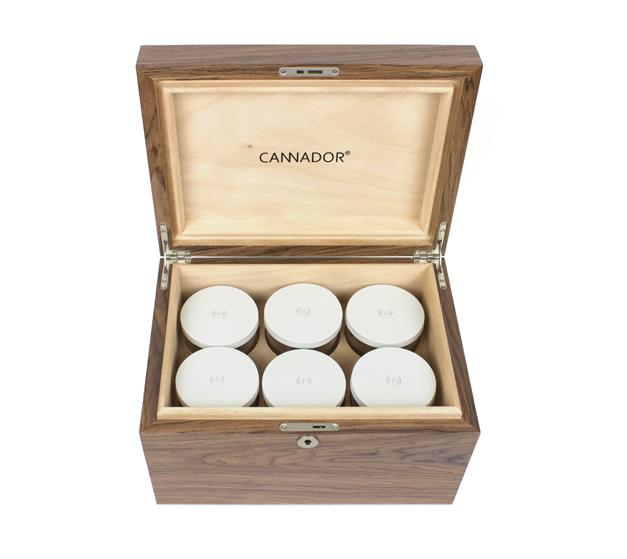 6-Strain Storage Box - Walnut