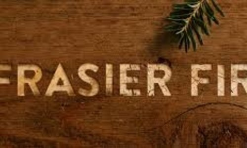 Frasier Fir produces unique fragrances, seasonings, and candles for the Holiday Season.