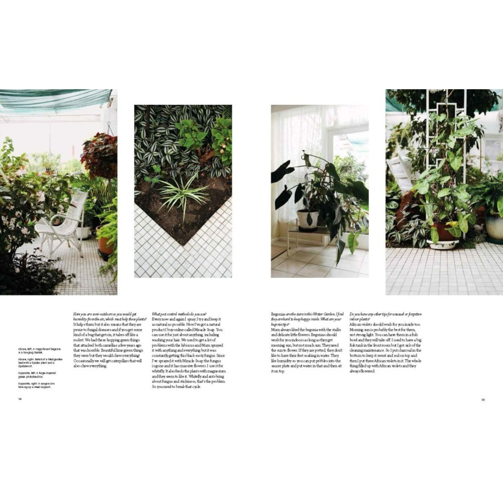PENGUIN RANDOM  HOUSE INDOOR GREEN LIVING WITH PLANTS