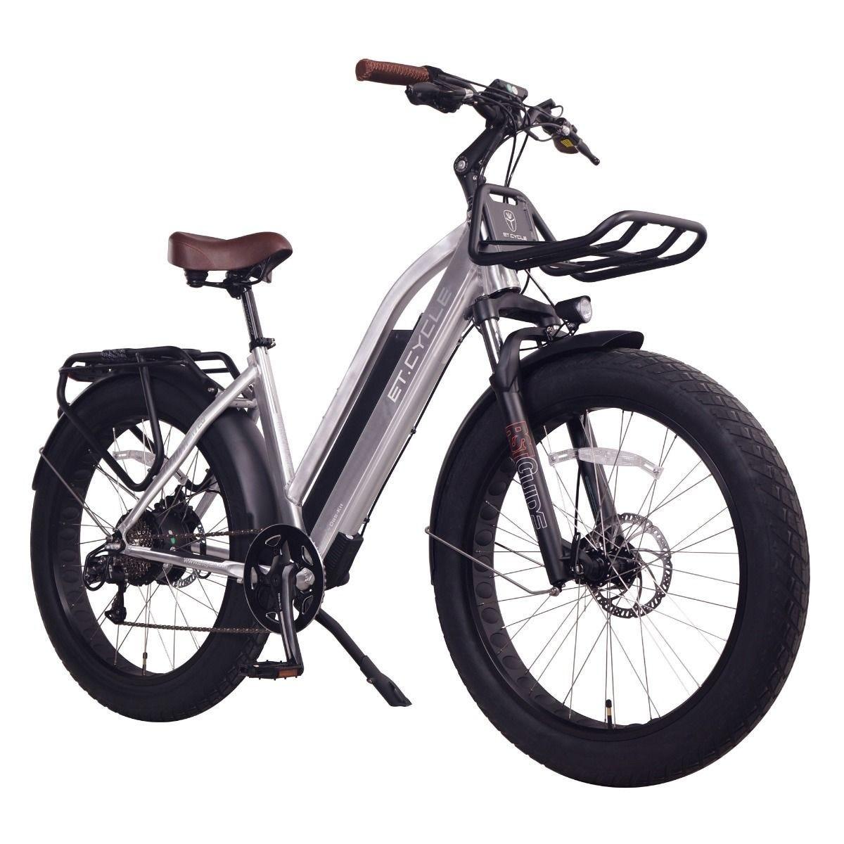 Electric fat bike rental starting at 34,50$