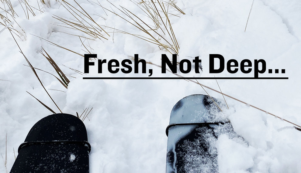 Fresh, Not Deep
