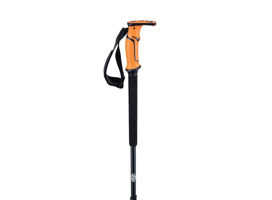BCA Scepter Adjustable Aluminum Poles