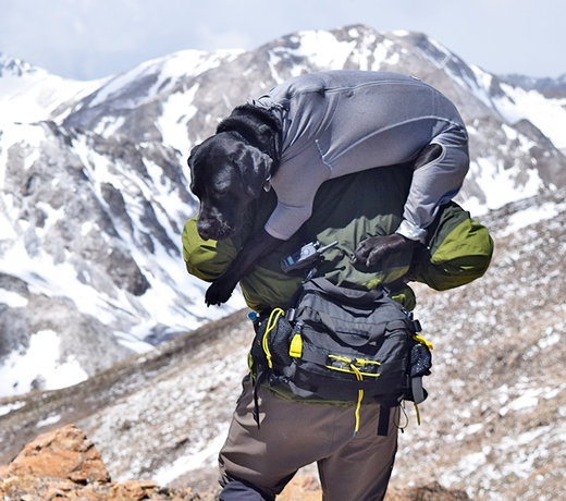Day & Hydration Packs