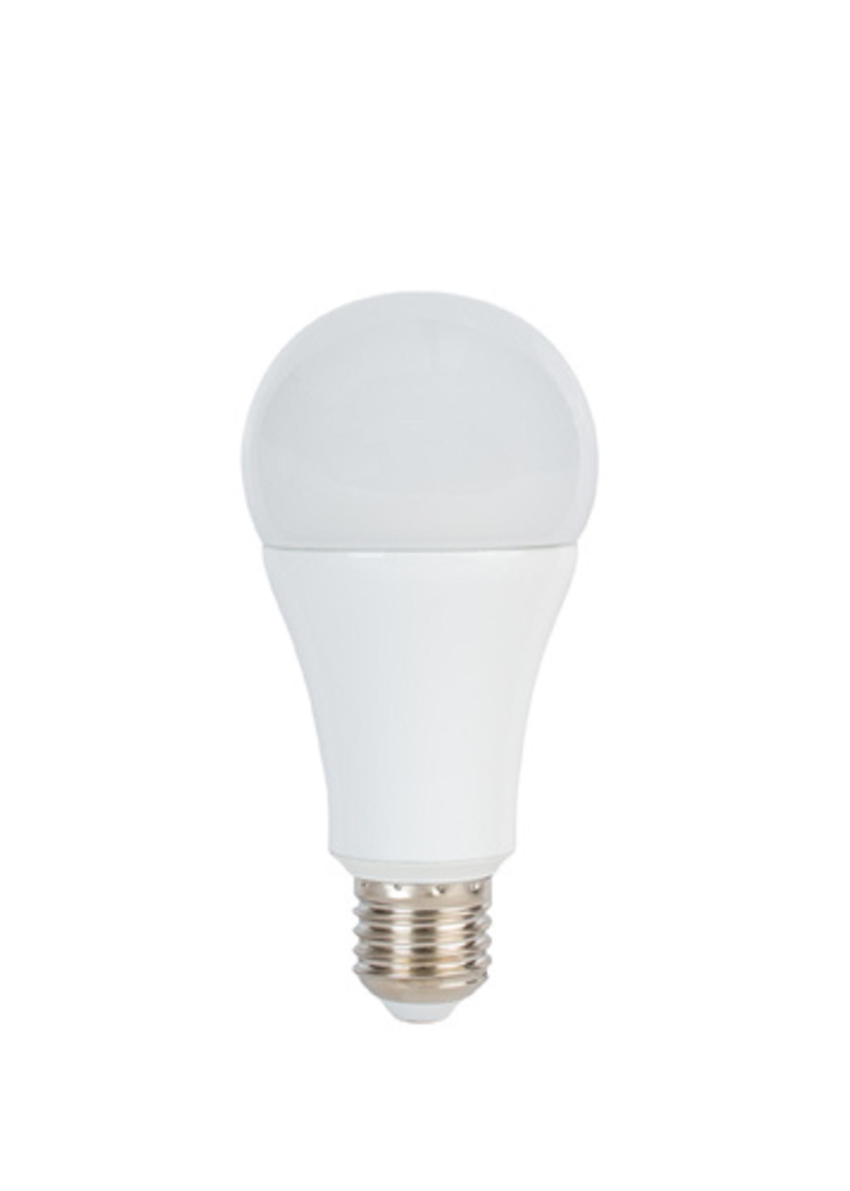ProMaster ProMaster LED Studio Lamp14W/5600 E27