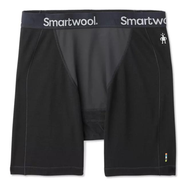 Smartwool Men's Merino Sport 250 Wind Boxer Brief