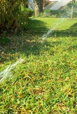 Irrigation Blow-Out
