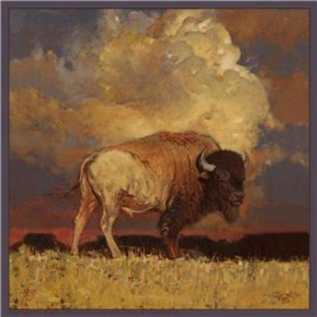 Rockmount Ranch Wear | Silk Scarf | Nothing But Buffalo & Sky by Jeff Segler
