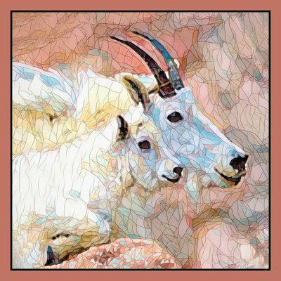 Impressionistic Photography Montana Mountain Goats Square Scarf