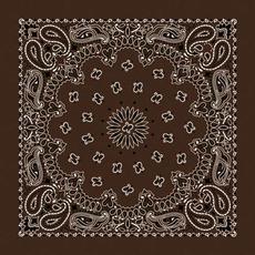 Rockmount Ranch Wear | Brown Cotton Bandana