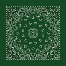 Rockmount Ranch Wear | Green Cotton Bandana