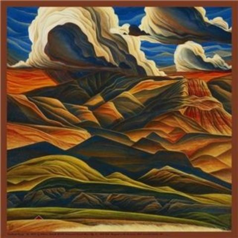 """Southwest Range"" Silk Scarf"