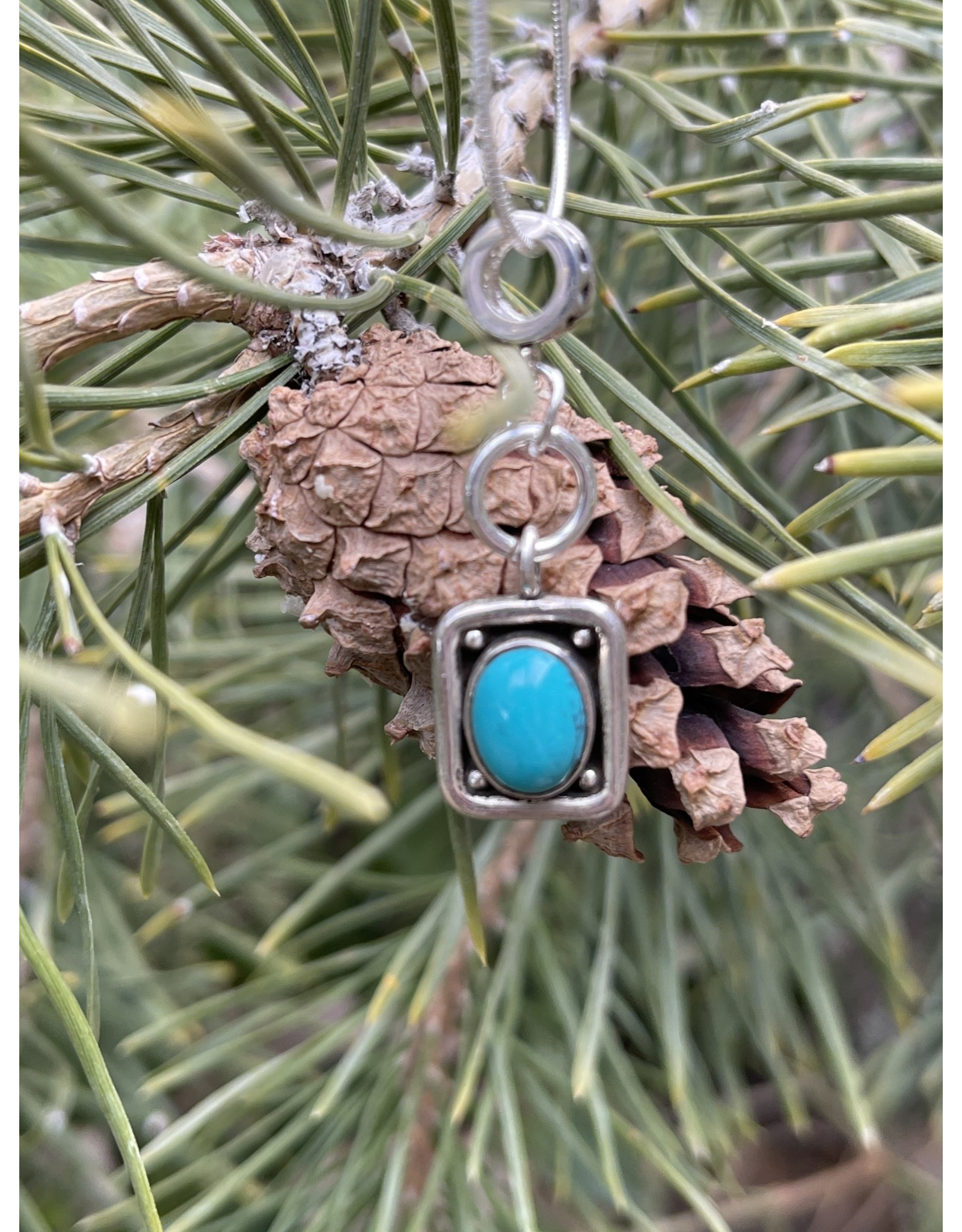 Annette Colby - Jeweler Blue Bird Turquoise Charm Necklace - Annette Colby
