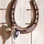 Cast Iron Horseshoe