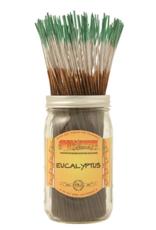 WILDBERRY- Eucalyptus