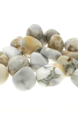 Orbicular Jasper Tumble Stone