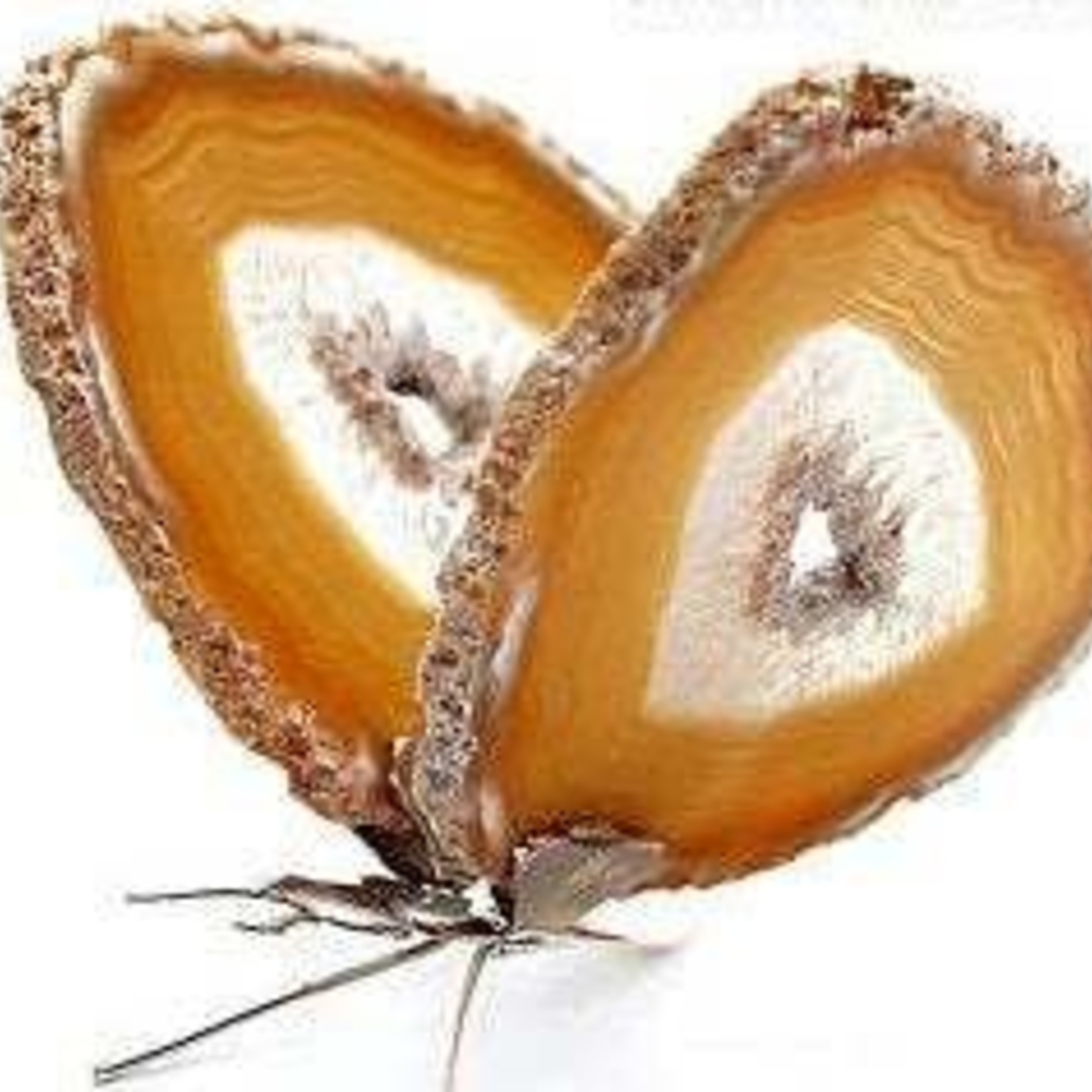Natural Agate Slice Butterfly