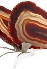 Red Agate Slice Butterfly