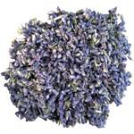Dried Blue Lavender Herb