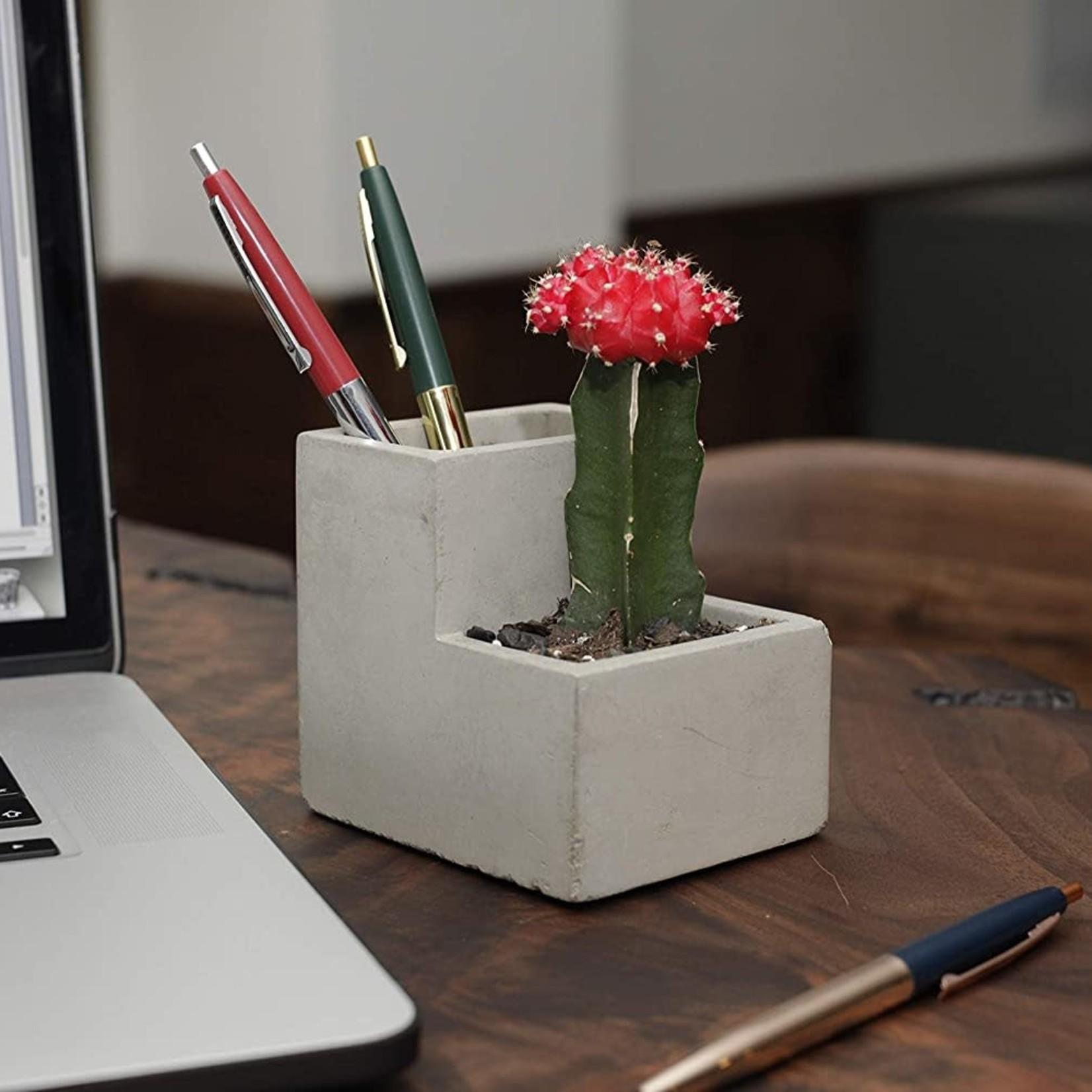 Desktop Planter/ Pen Holder