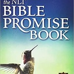 The NLT Promise  Bible Book