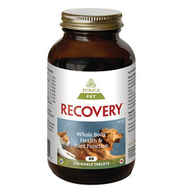 Purica Recovery Chewable Tablets
