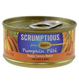 Scrumptious Pumpkin Pate 2.8OZ - Dog & Cat SINGLE