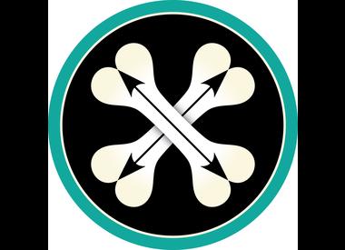 Bones + Arrows