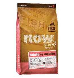 Petcurean NOW Trout Salmon & Herring Adult 22LB