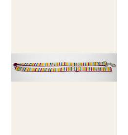 4 Paws Market Rainbow leash