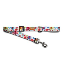 WOOF Concept Leash Spring Small .6in x 5ft