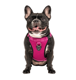 Canada Pooch Everything Harness Mesh