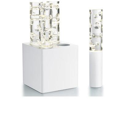 BACCARAT Jardin De Cristal Jallum Candle Light Iec 04L Round Shape Cut White