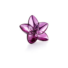 BACCARAT The Bloom Collection Peony Bloom