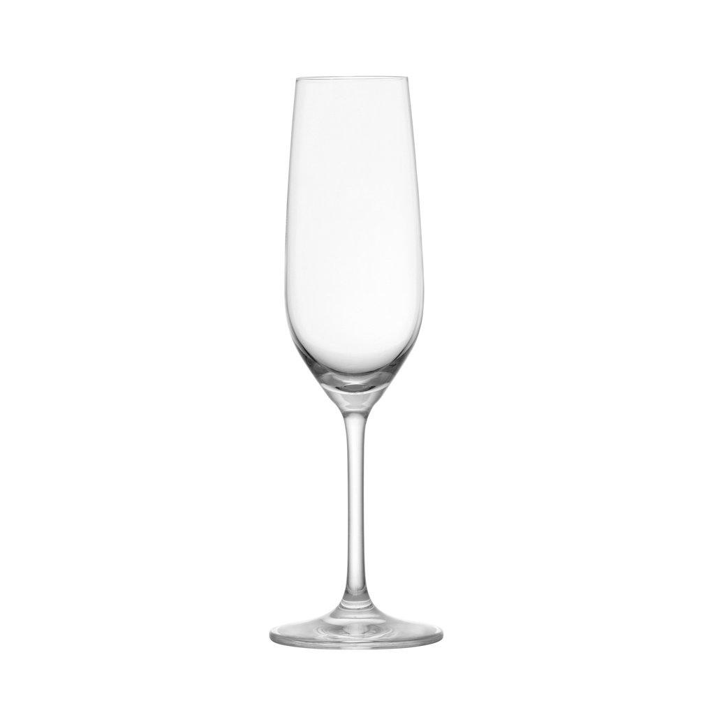 SCHOTT ZWIESEL Tritan Forte Flute Champagne 7.7 Oz Ensemble/6