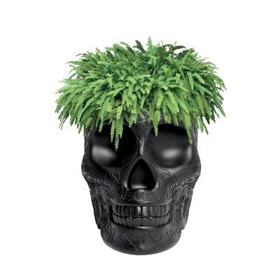 QEEBOO Mexico Skull Planter & Champagne Cooler - Black
