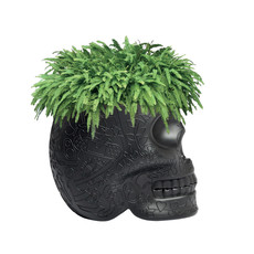 QEEBOO Mexico Skull Planter & Champagne Cooler in Black