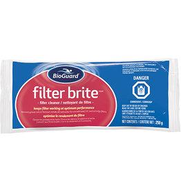 BIOGUARD BioGuard Filter Brite 250 gm bag